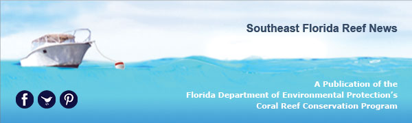 Southeast Florida Reef News - A Publication of the Florida Department of Environmental Protection's Coral Reef Conservation Program